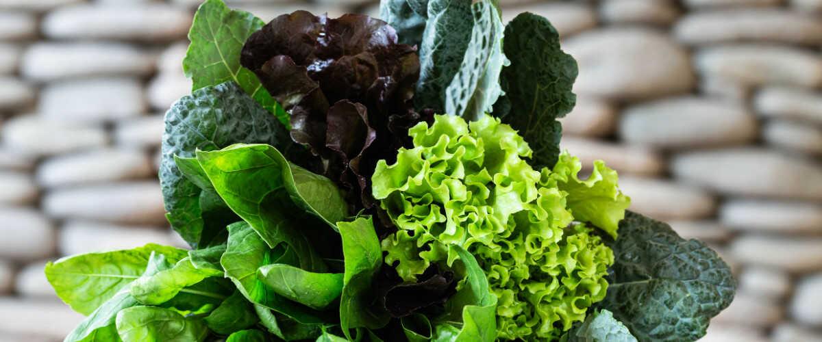 Диета при гипотиреозе - зеленые овощи